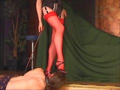 Inchinò a le gambe nyloned rossa , leccandosi suoi pattini
