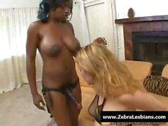 Zebra Lesbians - Sexy ebony lesbians fuck with strap-on toy 11
