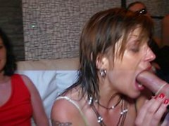 Hungry ladies suck men's cocks like pros during a fuck session