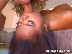 Annie sucking fucking and taking it up the ass