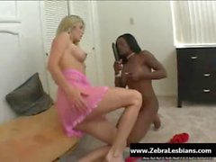 Zebra Girls - Ebony lesbian babes enjoy deep strap-on fuck 04