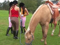 Four gorgeous young lesbians fuck with toys after horse riding