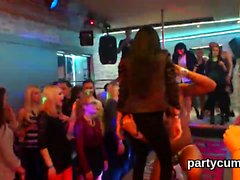Kinky girls get totally foolish and nude at hardcore party