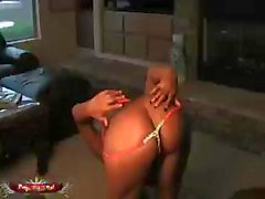 Indian babe Priya gets him hot and horny by putting on a show