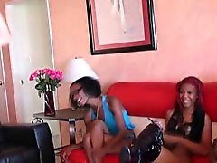 Ebony dominas laugh at white cock
