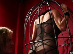 Alektra Blue is fucked in cage
