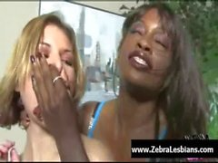 Zebra Girls - Ebony lesbian babes enjoy deep strap-on fuck 16
