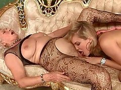 Old and Young Lesbians Compilation