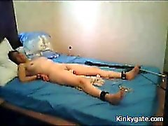 Severe Punishment my Wife Kate