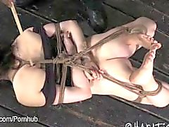 Brunette Hogtied and Foot Tortured