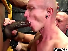 Leather strapped Gay dude sucks dicks