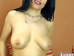 Brunette german girl does a cam show. You wil