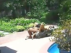 Black Lesbians Outdoors Near The Pool