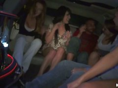 Real limousine party with Tila Flame And Gin Marie