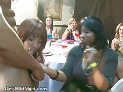 Horny party sluts suck cock