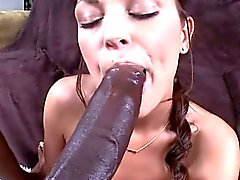 Massive cock drills the juicy fur pie