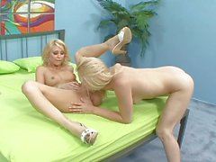 Horny blond lezzies pounding